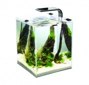 Aквариум Aquael Shrimp Set Smart LED Plant ll 10л черный